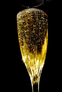 A wonderful way to bring in the New Year or celebrate a major milestone!