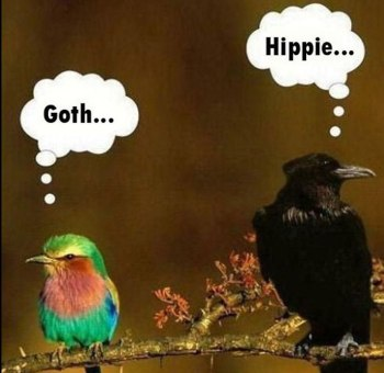 gothandhippiebirds