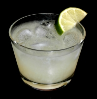 Gimlet Gin Cocktail