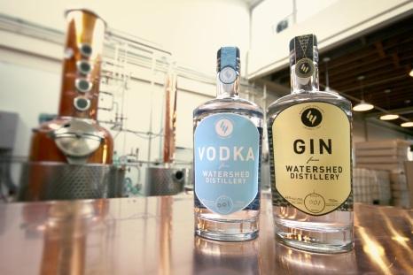 gin_vodka_bottles