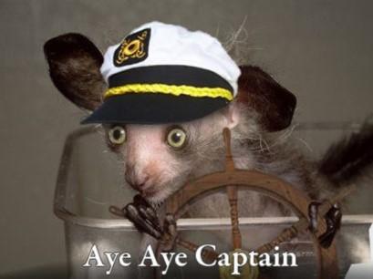 Aye-Aye-Captain