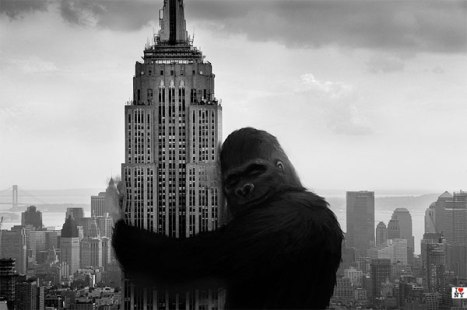 king-kong-hugs-the-empire-state-building