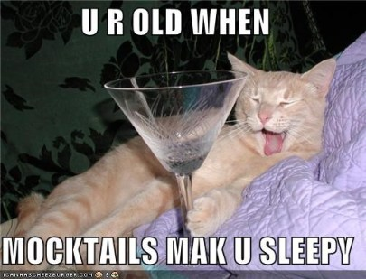 Mocktail Cat