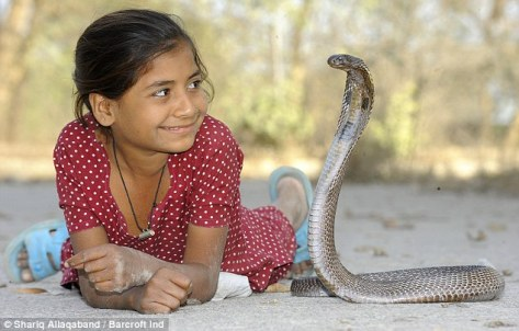 Cobra and girl