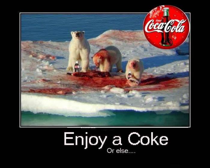 coca cola fugu pufferfish sip advisor