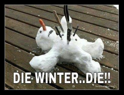 die-winter