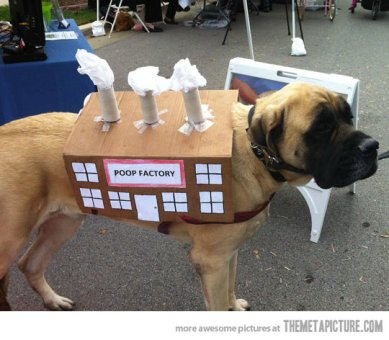dog-poop factory-costume