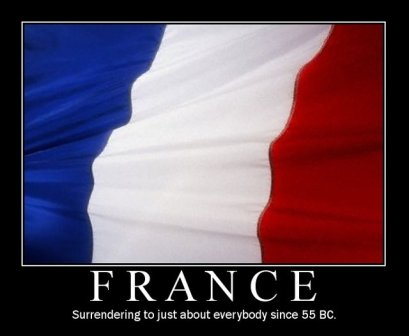 french-funny-flag