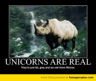 unicorns-are-real