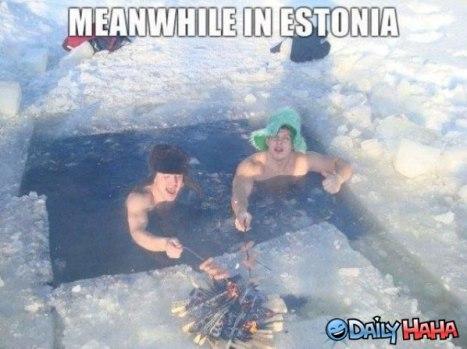 meanwhile-in-estonia