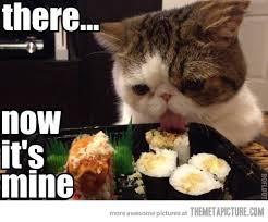 Cat Licks Sushi
