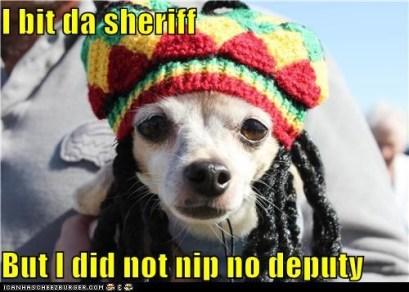 Bit Da Sheriff