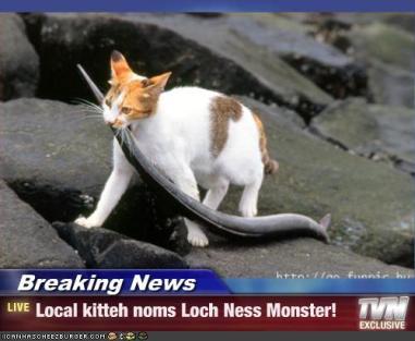 Kitty Loch Ness