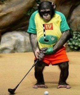 Monkey Golfing