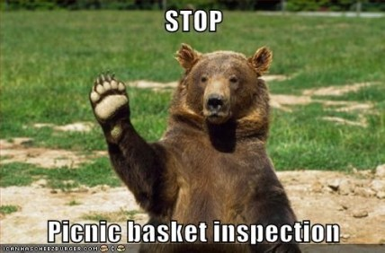 Picnic Basket Inspection