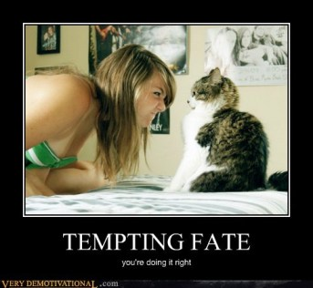 Tempting Fate Kitty