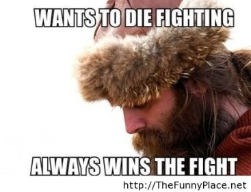Vikings Fight