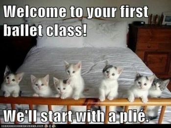 dance class plie