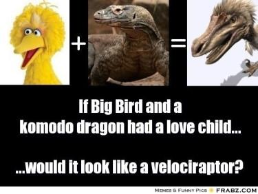 Komodo Big Bird