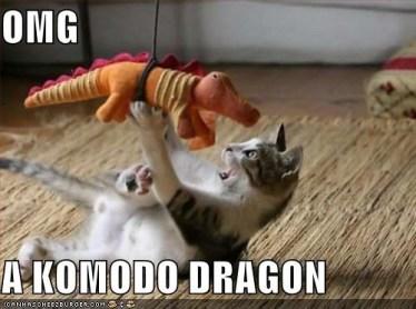 Komodo Kitty