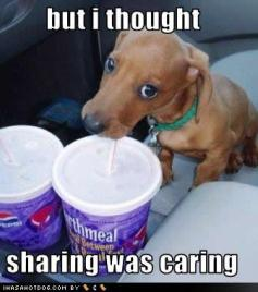 sharing was caring