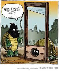 Turtle Guillotine