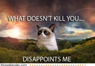 grumpy-cat-disappoints