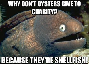 oysters shellfish