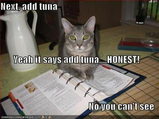 just-add-tuna