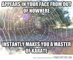 spider webs sticky