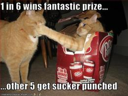 prize or punch