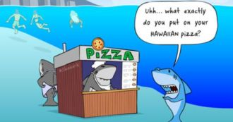 hawaiian-pizza-funny