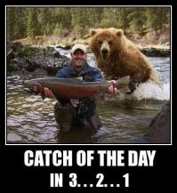 catch-of-the-day-bear