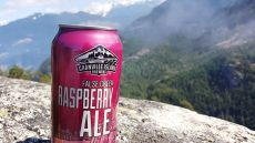 granville-island-false-creek-raspberry-ale