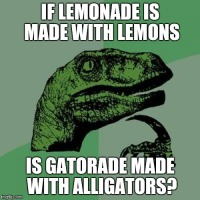 Gatorade with Gators