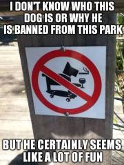 Dog Banned From Park.jpg