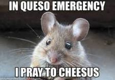Cheese Emergency